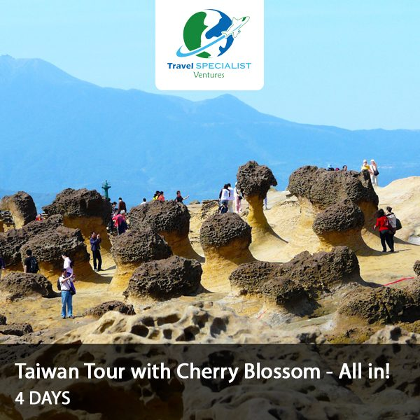 Taiwan Tour with Cherry blossom